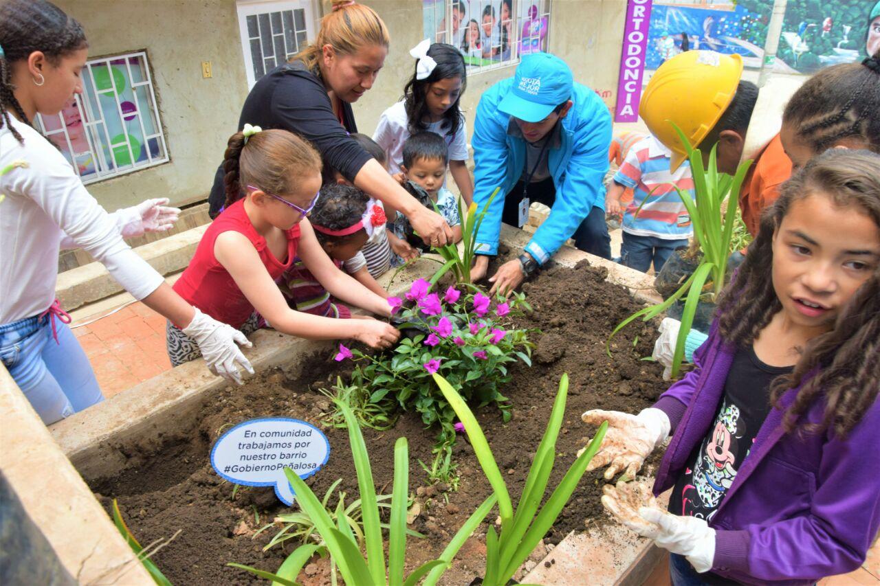 Barrios de Usaquén se embellecen con la plantación de buganvilias